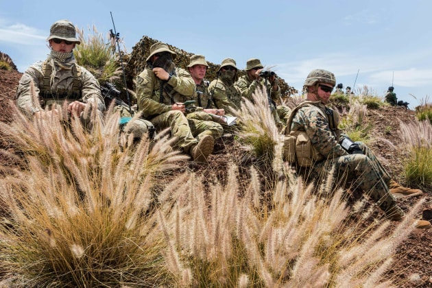 Interoperability with allies does not have to mean the same kit. (Defence)